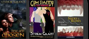 stormgrant.com