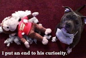 Curious George dies