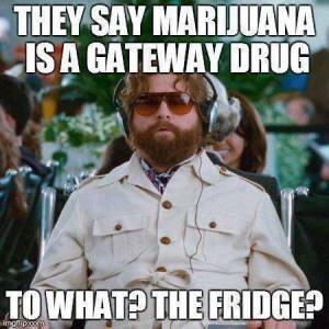 Pot a gateway to the fridge