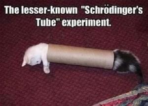 Shroedinger's tube