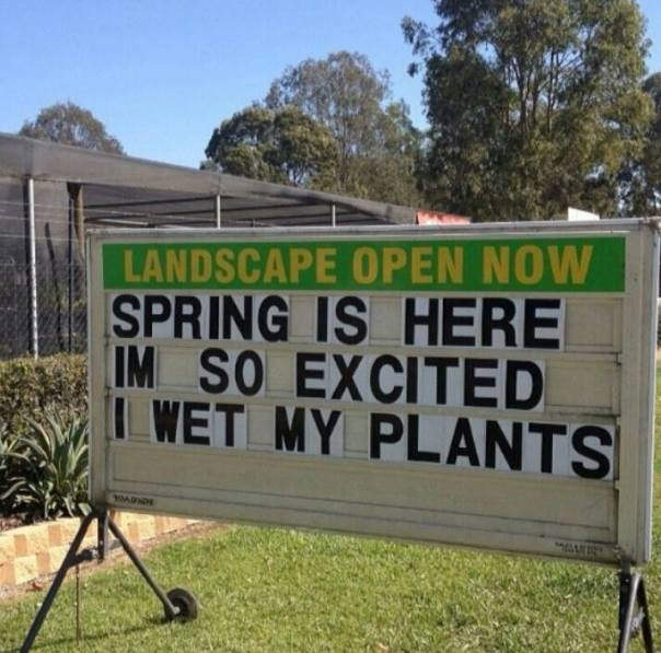 wet my plants