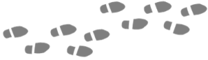 scene-dividerfootprints