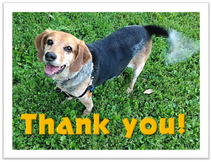 stormy-says-thank-you